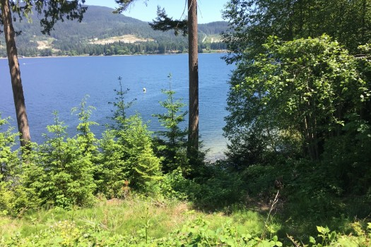 2017-05-29-135604 at 6106 Poise Island Drive, Sechelt District, Sunshine Coast