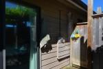 5745-surf-circle-sechelt-district-sunshine-coast-14 at 5745 Surf Circle, Sechelt District, Sunshine Coast